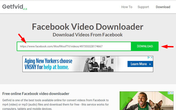 screenshot of Getfvid website showing the green box where you paste the Facebook video URL and the Download button.