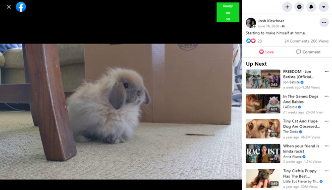 Screenshot of Facebook video post with HD and SD download options in green box.