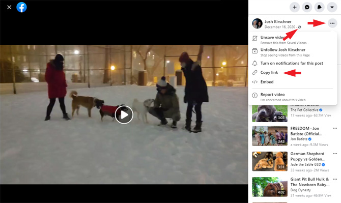 Screenshot of Facebook video post showing the globe indicating the video is public, the triple dots for the menu in the upper right, and the Copy Link menu option.