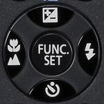 Flash button