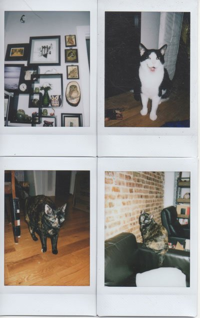 Instax Mini 70 Instant Camera Indoor Test