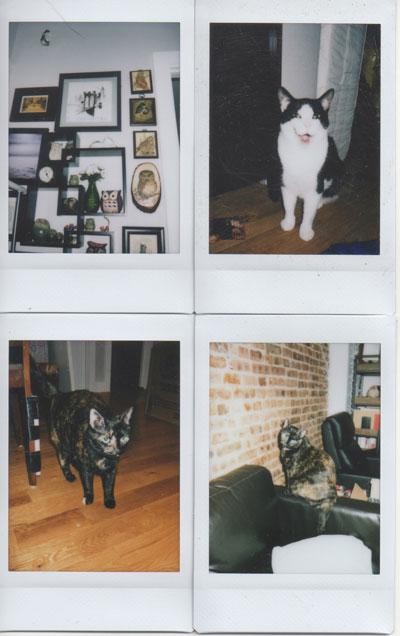 Instax Mini 70 Instant Camera Indoor Test