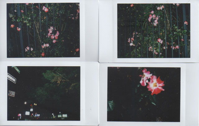 Instax Mini 70 Instant Camera Low Light Test