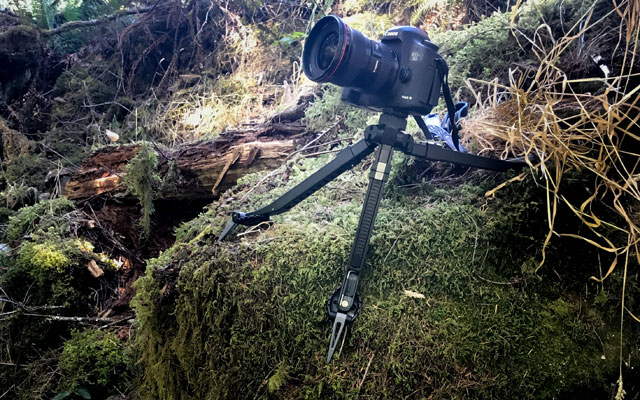 Best Tripod for Hiking and Backpacking: Pakpod