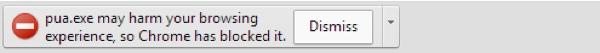 Google Chrome Safe Browsing warning