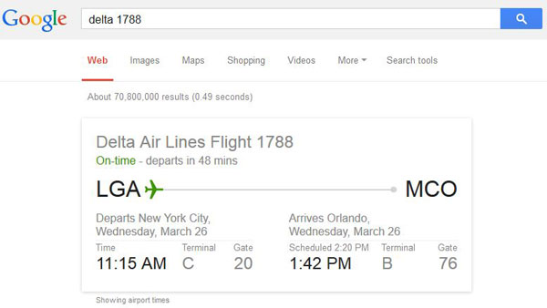 Google search - flight number