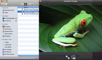 Mac OS X preview