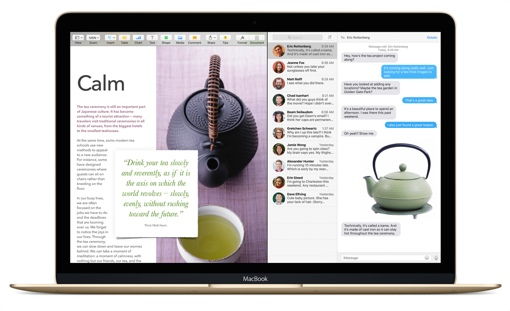 Mac running OS X El Capitan (Split View)