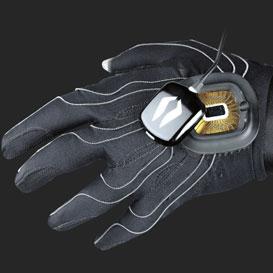 Peregrine glove back