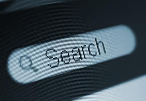 Web search field