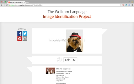 Wolfram Alpha Image Identification Project screenshot