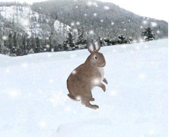 iDoodle Snow Globe