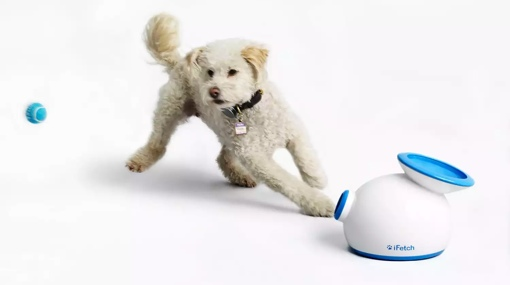 iFetch ball launching toy