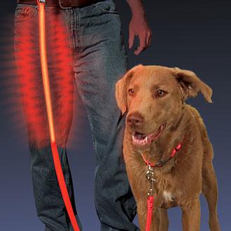 Nite Ize Nite Dawg LED petleash