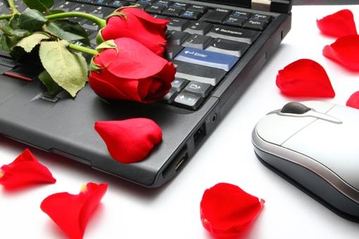 Rose on laptop computer