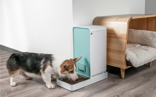 Best design: PETKIT Fresh Element smart pet feeder