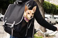 Timbuk2 Muttmover Backpack