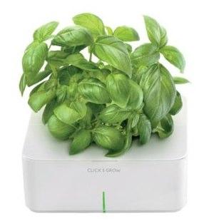 Click and Grow Smart Flowerpot
