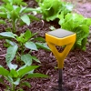 The Future of Plant and Garden Care on Display at CES 2015