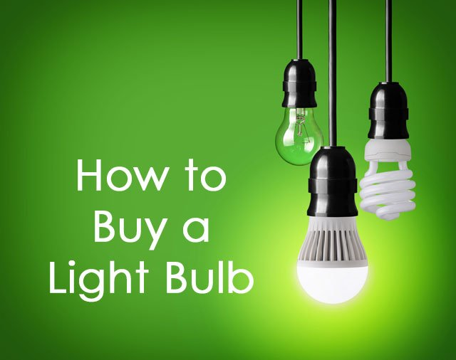 What Are My Light Bulb Options?