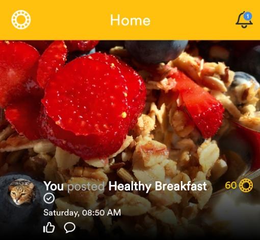 Wellcoin app screenshot