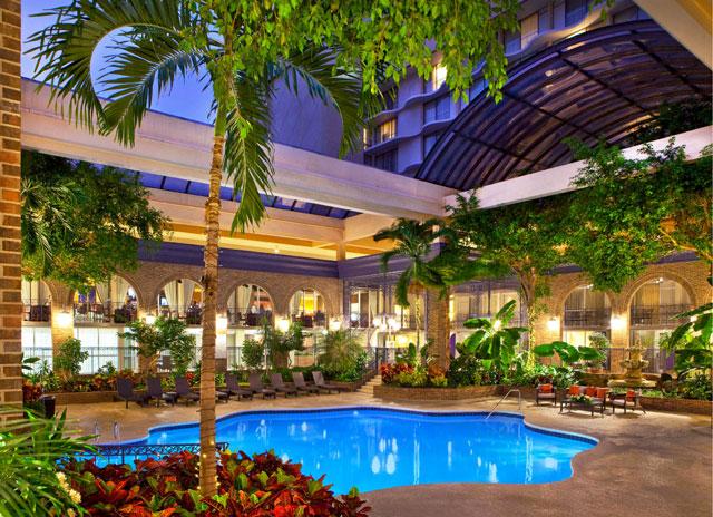 Sheraton Atlanta hotel pool has a retractable roof for winter swimming