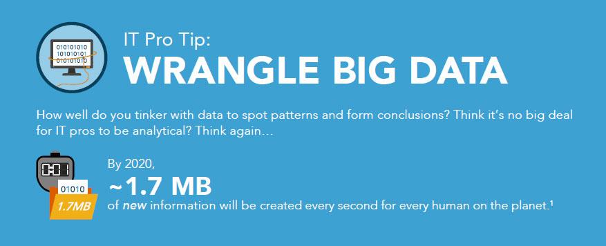 Capella University IT big data infographic