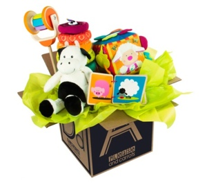 Please and Carrots gift box with stuffed animal; soft puzzle