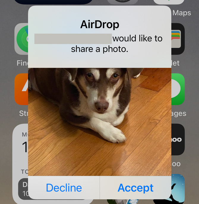 Screenshot of AirDrop with a picture of a dog with blanked out name would like to share a photo. Below the photo are Decline and Accept buttons.