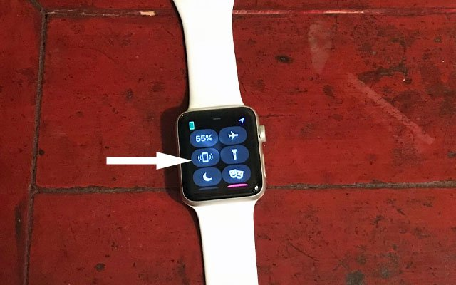 Apple Watch: Find Phone