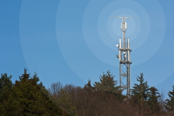 Cell tower in the woods