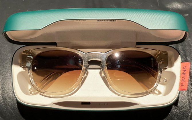 Top down view of Fauna Audio glasses in charging case.