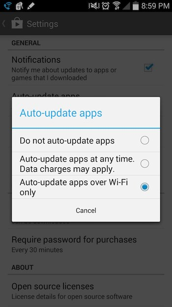 Google Play auto update settings