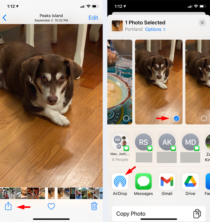 Two screenshots of AirDrop from Photos app. First screenshot from the left shows picture of dogs with a menu bar at the bottom with the share icon (rectangle with arrow coming out the top), a heart and a trash can. The second screenshot shows the dog photo with a check mark in a blue circle, a row of initials with Messages icons next to them, and a bottom row with the AirDrop icon, Messages icon, Gmail icon, and Drive icon.