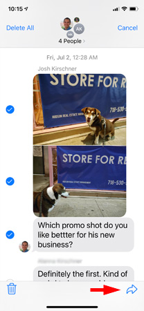 Screenshot of text messages showing dog photos and text with checkmarks next tow three items. The arrow in the lower right corner is pointed out.