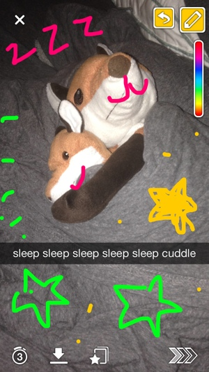 Snapchat screenshot of stuffed animals (Rars)
